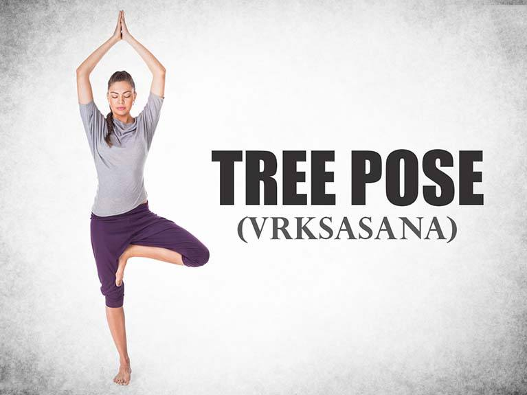 9-tree-pose-vrksasana